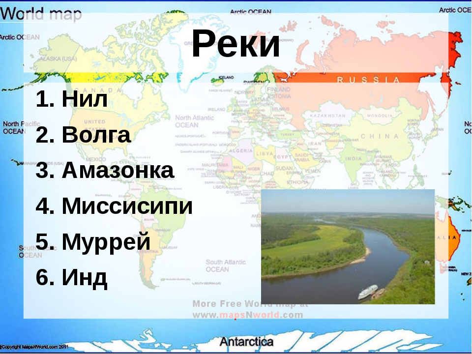 Реки 1. Нил 2. Волга 3. Амазонка 4. Миссисипи 5. Муррей 6. Инд