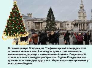 В самом центре Лондона, на Трафальгарской площади стоит огромная зеленая ель.