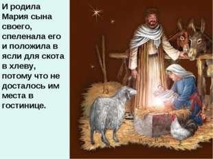 И родила Мария сына своего, спеленала его и положила в ясли для скота в хлеву