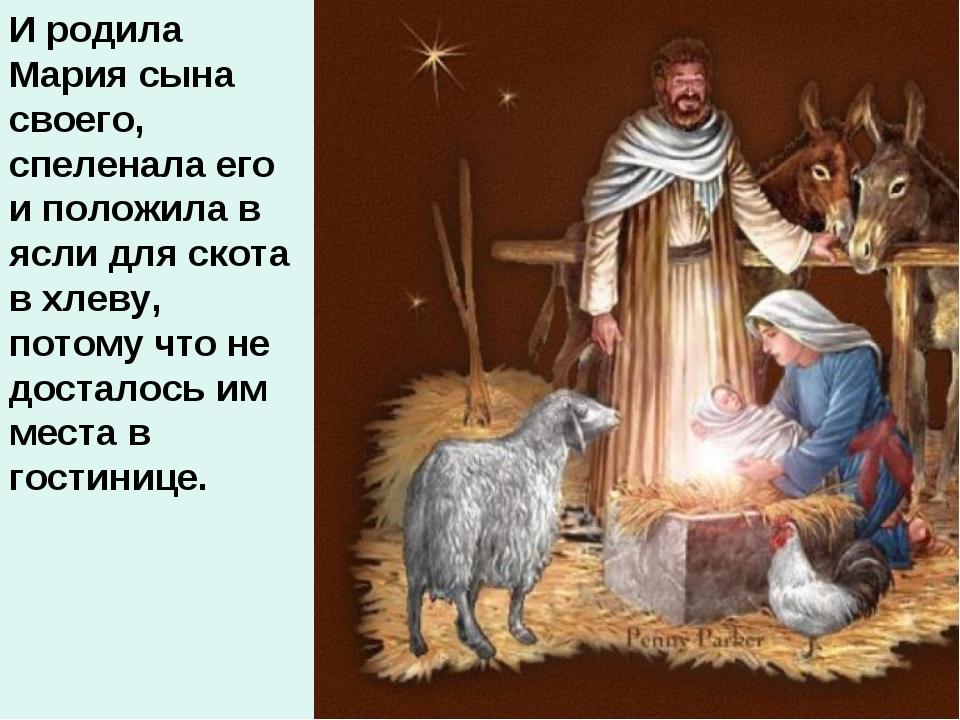 И родила Мария сына своего, спеленала его и положила в ясли для скота в хлеву...