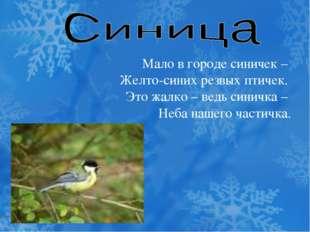 Мало в городе синичек – Желто-синих резвых птичек. Это жалко – ведь синичка –