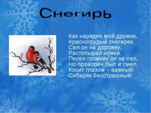 Как наряден мой дружок, Красногрудый снегирек. Сел он на дорожку, Растопырил