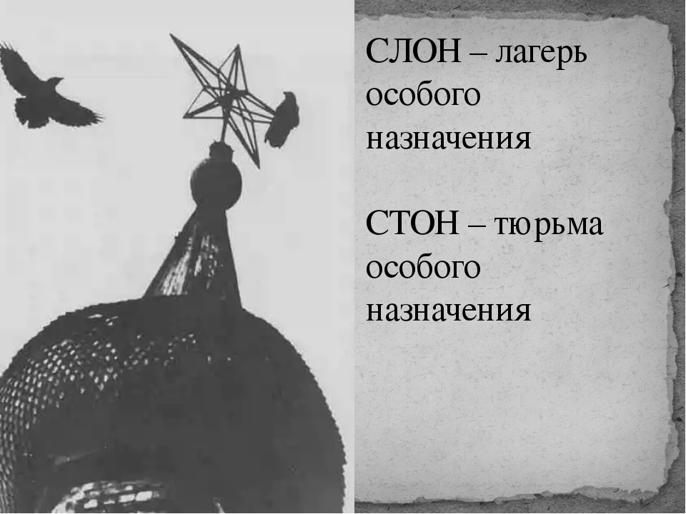 СЛОН – лагерь особого назначения СТОН – тюрьма особого назначения