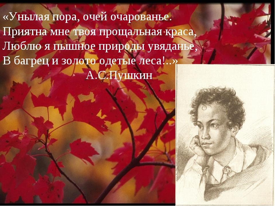 «Унылая пора, очей очарованье. Приятна мне твоя прощальная краса, Люблю я пыш...