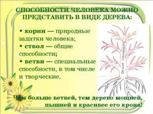 СПОСОБНОСТИ ЧЕЛОВЕКА МОЖНО ПРЕДСТАВИТЬ В ВИДЕ ДЕРЕВА: • корни — природные зад