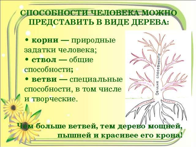 СПОСОБНОСТИ ЧЕЛОВЕКА МОЖНО ПРЕДСТАВИТЬ В ВИДЕ ДЕРЕВА: • корни — природные зад...