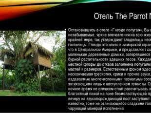 Отель The Parrot Nest Остановившись в отеле «Гнездо попугая», Вы получите не