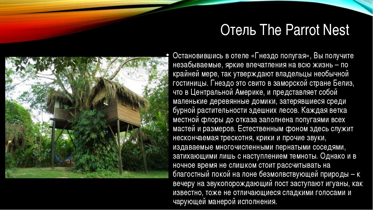 Отель The Parrot Nest Остановившись в отеле «Гнездо попугая», Вы получите не...