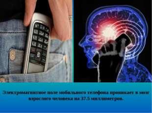 Электромагнитное поле мобильного телефона проникает в мозг взрослого человека