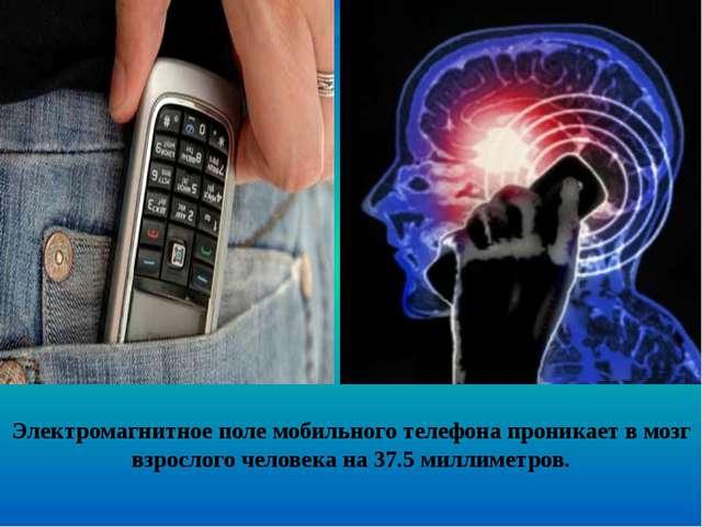 Электромагнитное поле мобильного телефона проникает в мозг взрослого человека...