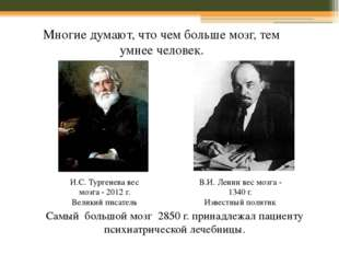 И.С. Тургенева вес мозга - 2012 г. Великий писатель В.И. Ленин вес мозга - 13
