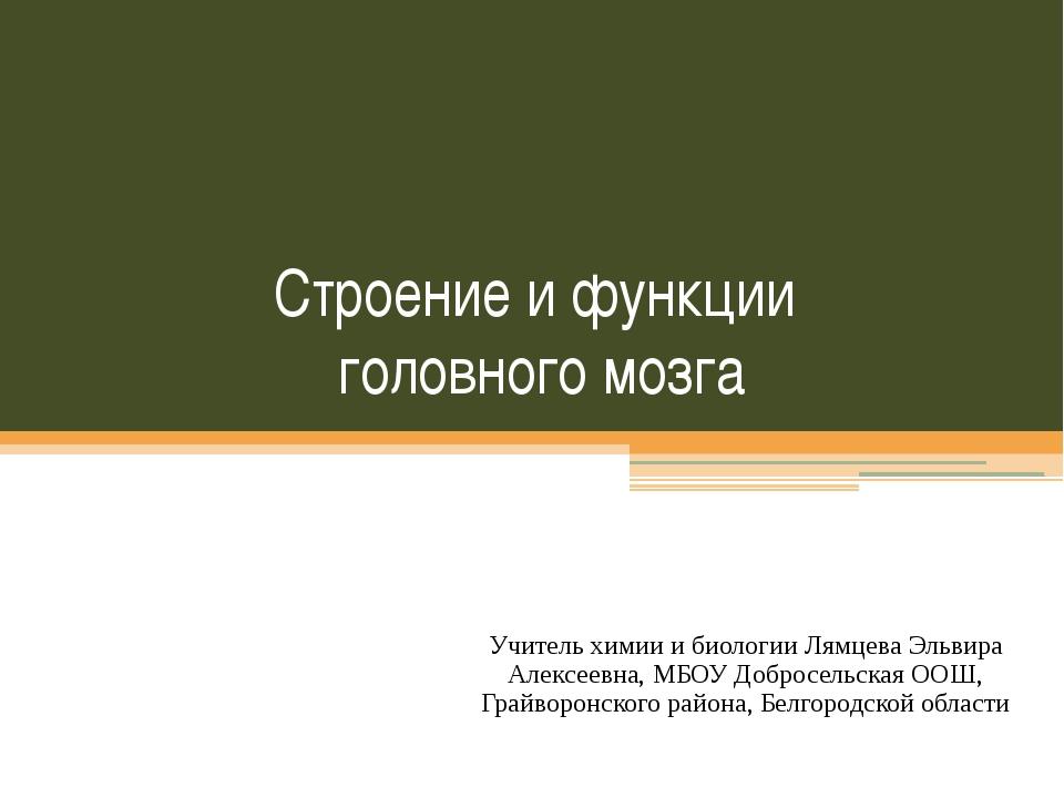 Строение и функции головного мозга Учитель химии и биологии Лямцева Эльвира А...