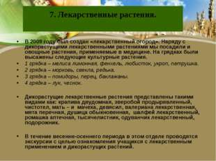 7. Лекарственные растения. В 2009 году был создан «лекарственный огород». Нар