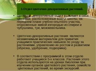 1.Отдел цветочно-декоративных растений. Цветочно-декоративный отдел включает
