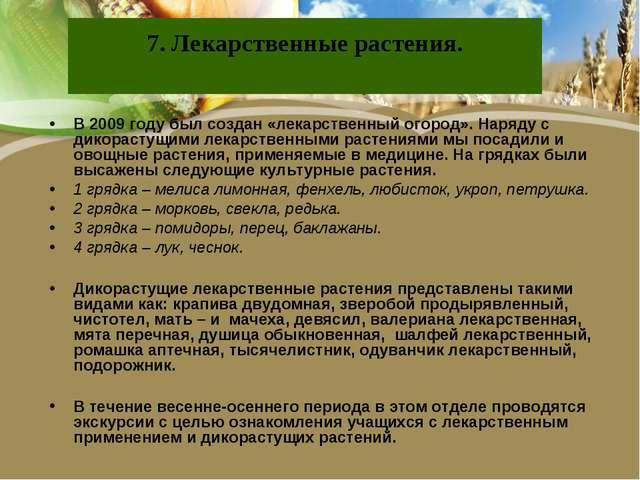 7. Лекарственные растения. В 2009 году был создан «лекарственный огород». Нар...