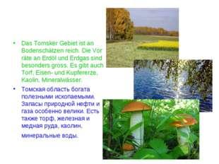 Das Tomsker Gebiet ist an Bodenschätzen reich. Die Vor räte an Erdöl und Erdg
