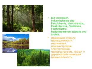 Die wichtigsten Industriezweige sind Petrolchemie, Maschinenbau, Elektrotechn