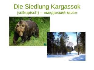 Die Siedlung Kargassok (sölkupisch) – «медвежий мыс»
