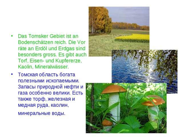 Das Tomsker Gebiet ist an Bodenschätzen reich. Die Vor räte an Erdöl und Erdg...