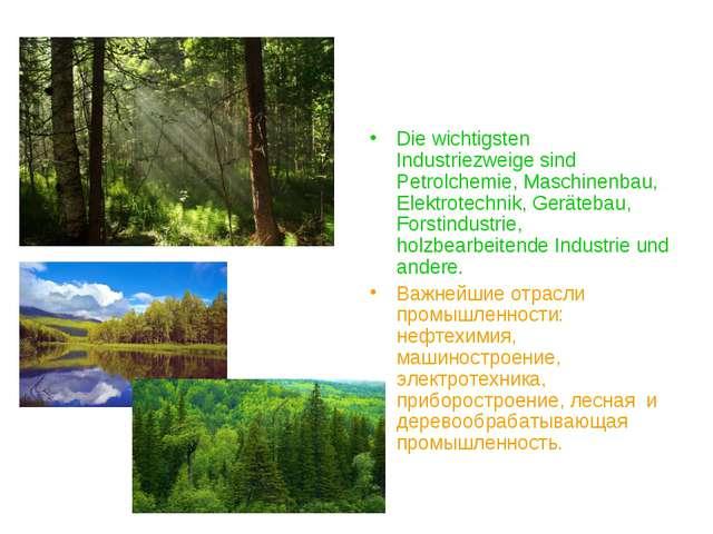 Die wichtigsten Industriezweige sind Petrolchemie, Maschinenbau, Elektrotechn...
