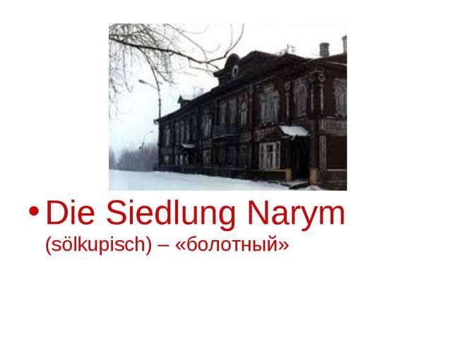 Die Siedlung Narym (sölkupisch) – «болотный»