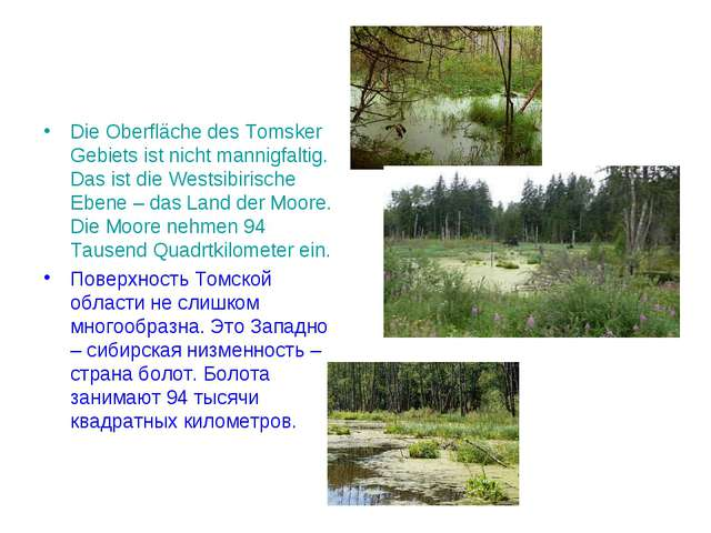 Die Oberfläche des Tomsker Gebiets ist nicht mannigfaltig. Das ist die Westsi...