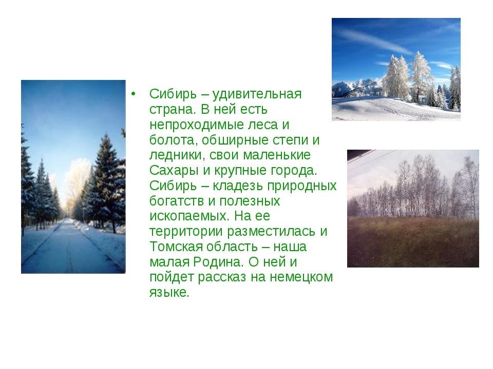 Сибирь – удивительная страна. В ней есть непроходимые леса и болота, обширные...
