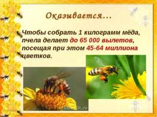 Оказывается… Чтобы собрать 1 килограмм мёда, пчела делает до 65 000 вылетов,