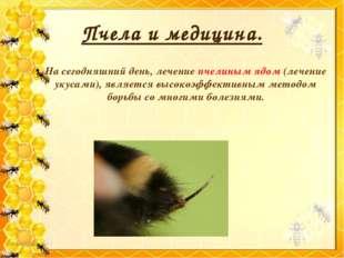 Пчела и медицина. На сегодняшний день, лечение пчелиным ядом (лечение укусами