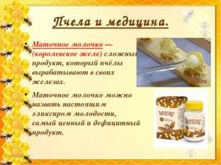 Пчела и медицина. Маточное молочко — (королевское желе) сложный продукт, кото
