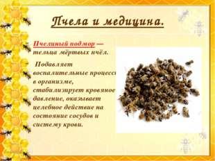 Пчела и медицина. Пчелиный подмор — тельца мёртвых пчёл. Подавляет воспалител