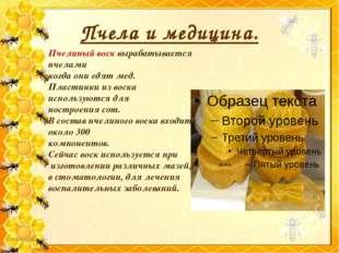 Пчела и медицина. Пчелиный воск вырабатывается пчелами когда они едят мед. Пл