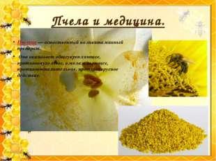 Пчела и медицина. Пыльца — естественный поливитаминный препарат. Она оказывае