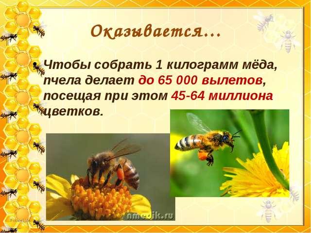 Оказывается… Чтобы собрать 1 килограмм мёда, пчела делает до 65 000 вылетов,...