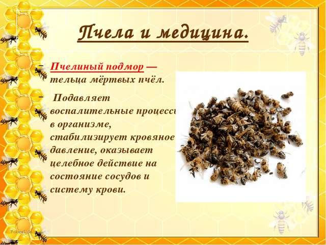 Пчела и медицина. Пчелиный подмор — тельца мёртвых пчёл. Подавляет воспалител...