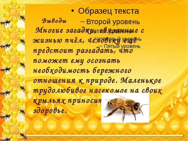 Выводы Многие загадки, связанные с жизнью пчёл, человеку ещё предстоит ра...