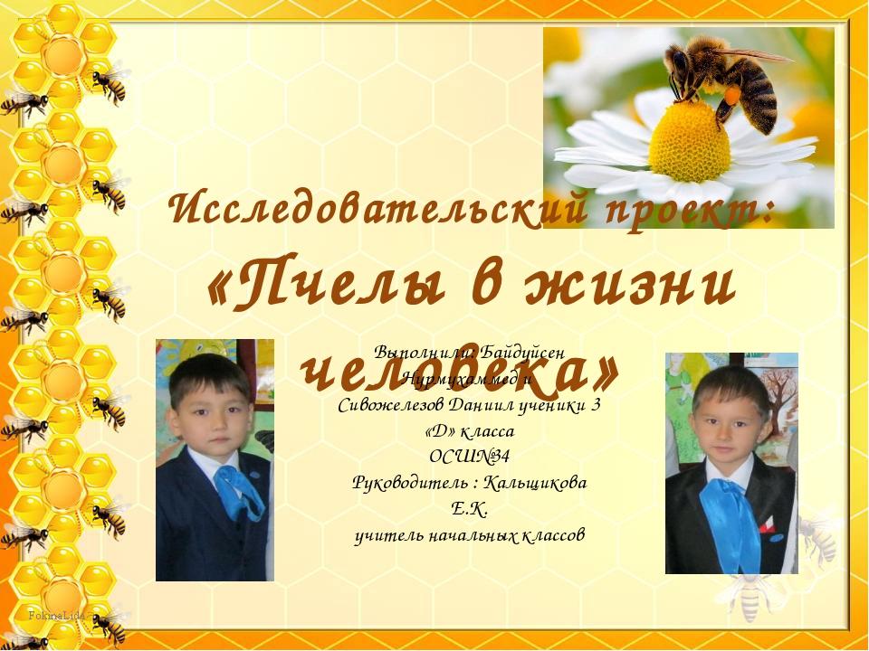 Исследовательский проект: «Пчелы в жизни человека» Выполнили: Байдуйсен Нурму...