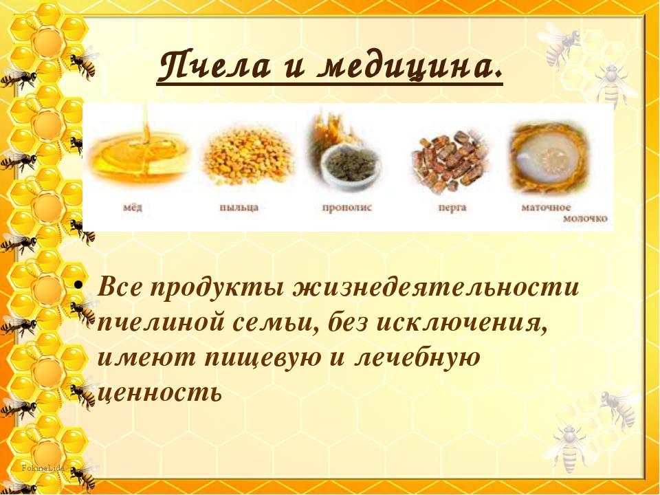 Все продукты жизнедеятельности пчелиной семьи, без исключения, имеют пищевую...