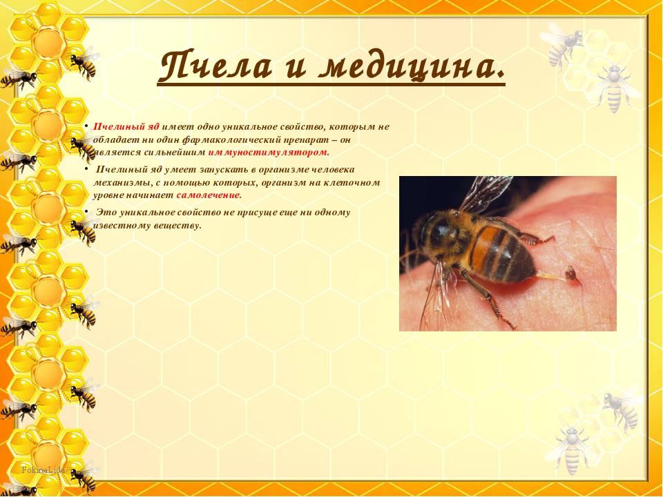 Пчелиный яд имеет одно уникальное свойство, которым не обладает ни один фарма...