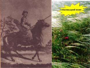 Калмыцкий воин