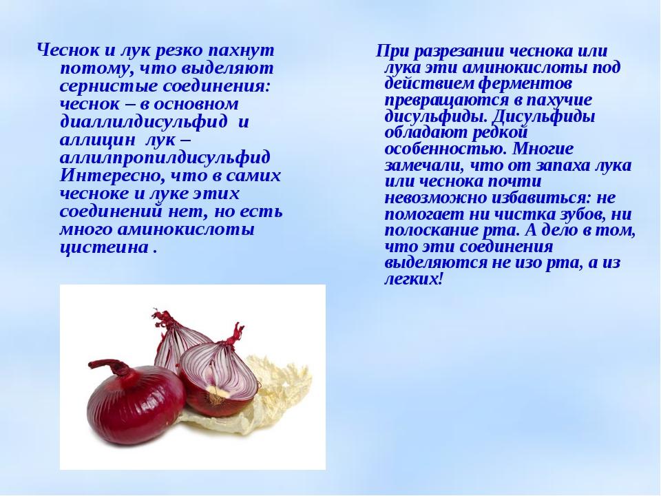 Чеснок и лук резко пахнут потому, что выделяют сернистые соединения: чеснок –...