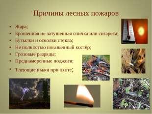 Жара; Брошенная не затушенная спичка или сигарета; Бутылки и осколки стекла;