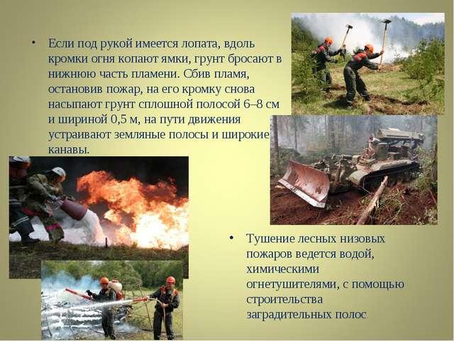 Если под рукой имеется лопата, вдоль кромки огня копают ямки, грунт бросают в...