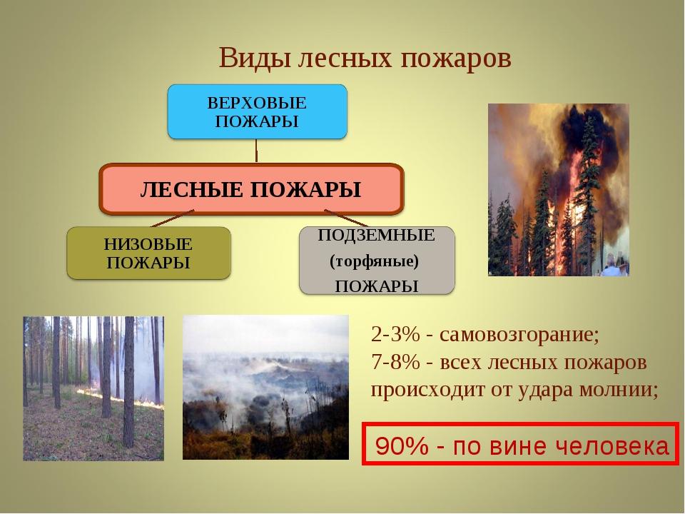 Виды лесных пожаров 2-3% - самовозгорание; 7-8% - всех лесных пожаров происхо...