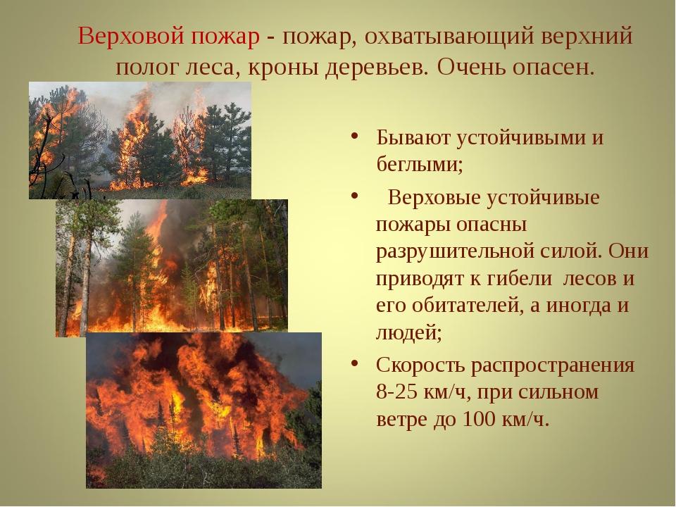 Верховой пожар - пожар, охватывающий верхний полог леса, кроны деревьев. Оче...