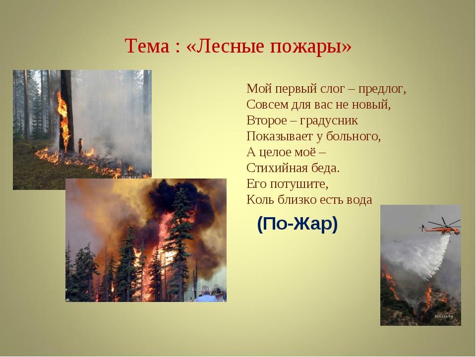 Тема : «Лесные пожары» Мой первый слог – предлог, Совсем для вас не новый, Вт...