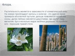 Флора. Растительность меняется в зависимости от климатической зоны. На севере