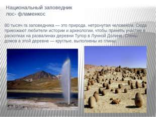 Национальный заповедник лос- фламенкос 80 тысяч га заповедника — это природа,
