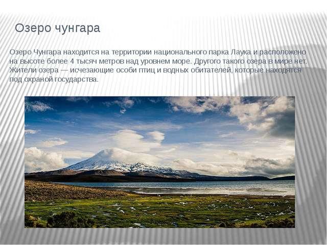Озеро чунгара Озеро Чунгара находится на территории национального парка Лаука...