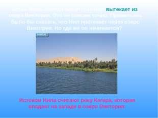 Исток Нила. Иногда пишут, что Нил вытекает из озера Виктория. Это не совсем т